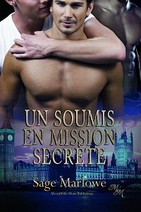 Un Soumis en Mission Secrète