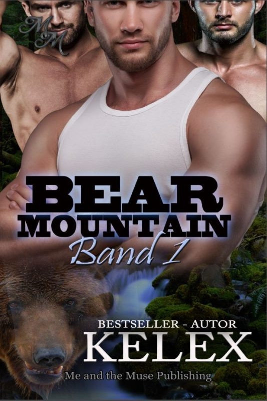 Bear Mountain Band 1 (Taschenbuch)