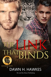 The Link That Binds: Die Verbindung
