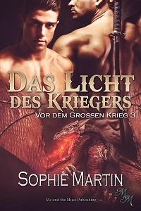 Das Licht des Kriegers (Taschenbuch)