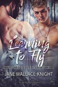 Learning to Fly: Fliegen lernen