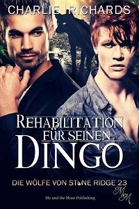 Rehabilitation für seinen Dingo