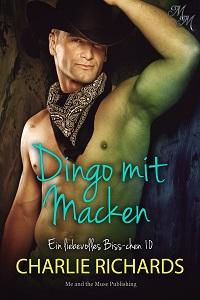 Dingo mit Macken
